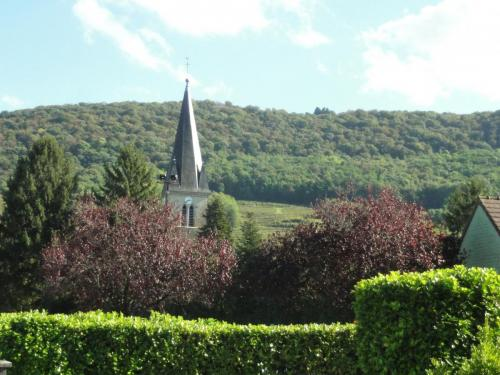 photo-village-arbres-2